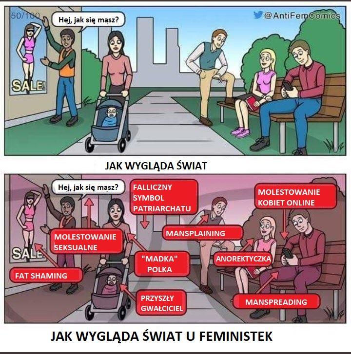 świat widziany oczyma feministek
