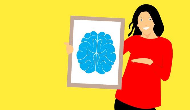 kobiecy mózg w relacjach